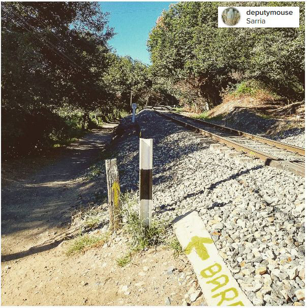 arrow camino santiago