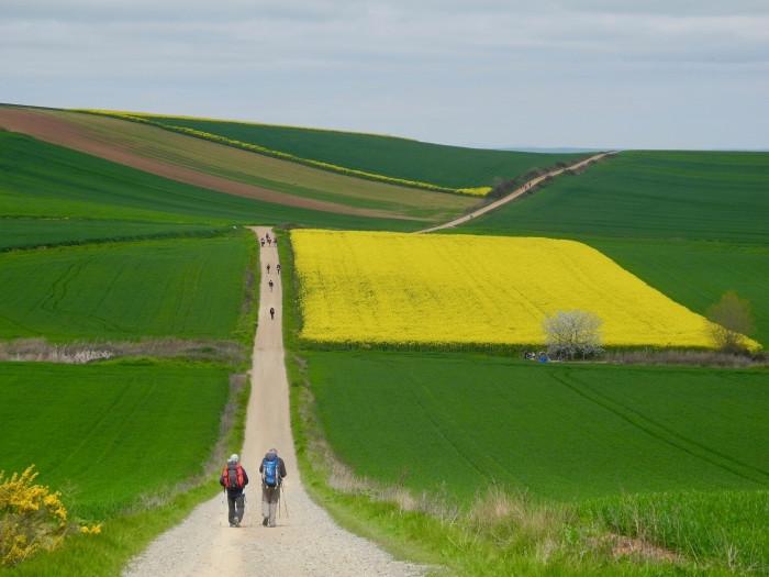 Horizonte en el Camino, fotografía ganadora del segundo premio del concurso Los colores del Camino