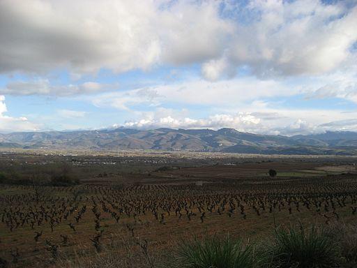 wine villafranca