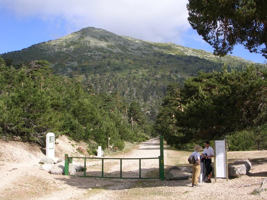 Subida al puerto de Fonfría, el punto más alto de los Caminos de Santiago