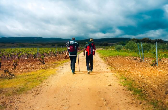 Peregrinos en el Camino de Santiago Francés