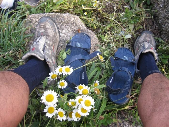 Calzado Camino de Santiago en primavera