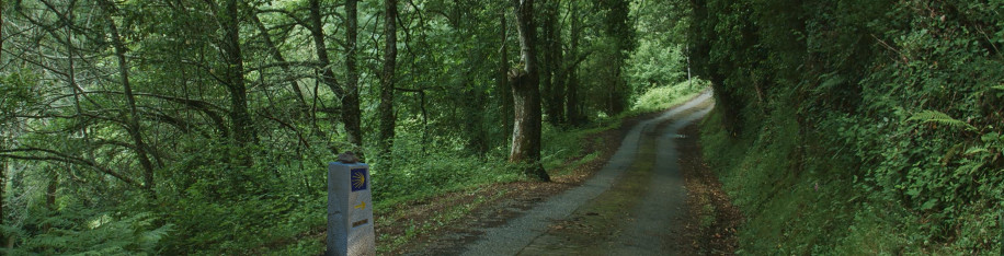 Sustainable Camino