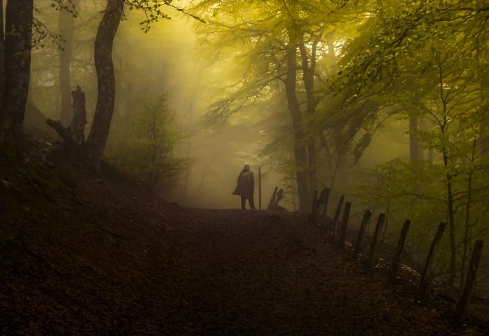 Niebla en Roncesvalles, fotografía ganadora del concurso Los colores del Camino