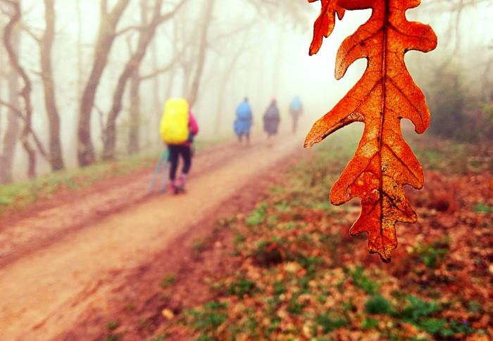 Cor em movimento, tercer premio del concurso de fotografía Los colores del Camino