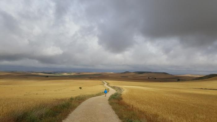 Concurso Los Colores del Camino