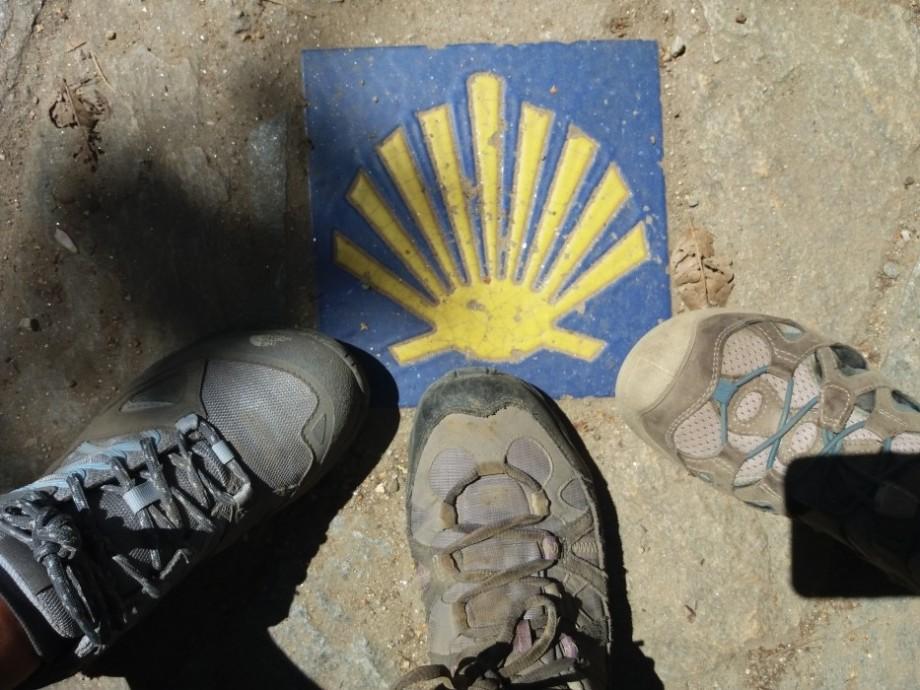 Concha de peregrino en el Camino de Santiago