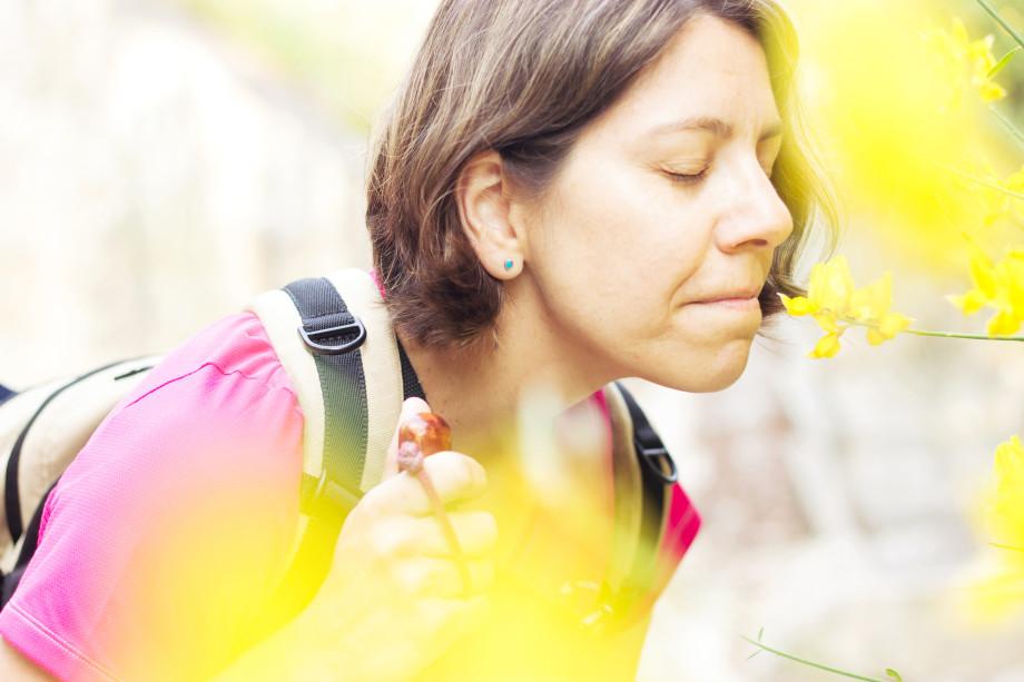 como triunfar en el concurso fotografico del camino de santiago
