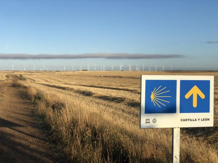 Flecha amarilla, señal del Camino de Santiago