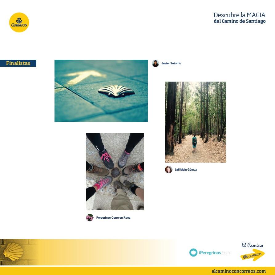 fotos finalistas descubre la magia del camino de santiago