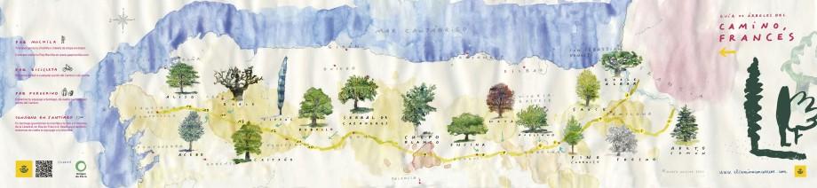 Mapa - Guía de árboles del Camino Francés