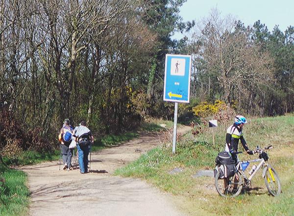 pilgrims camino santiago bike