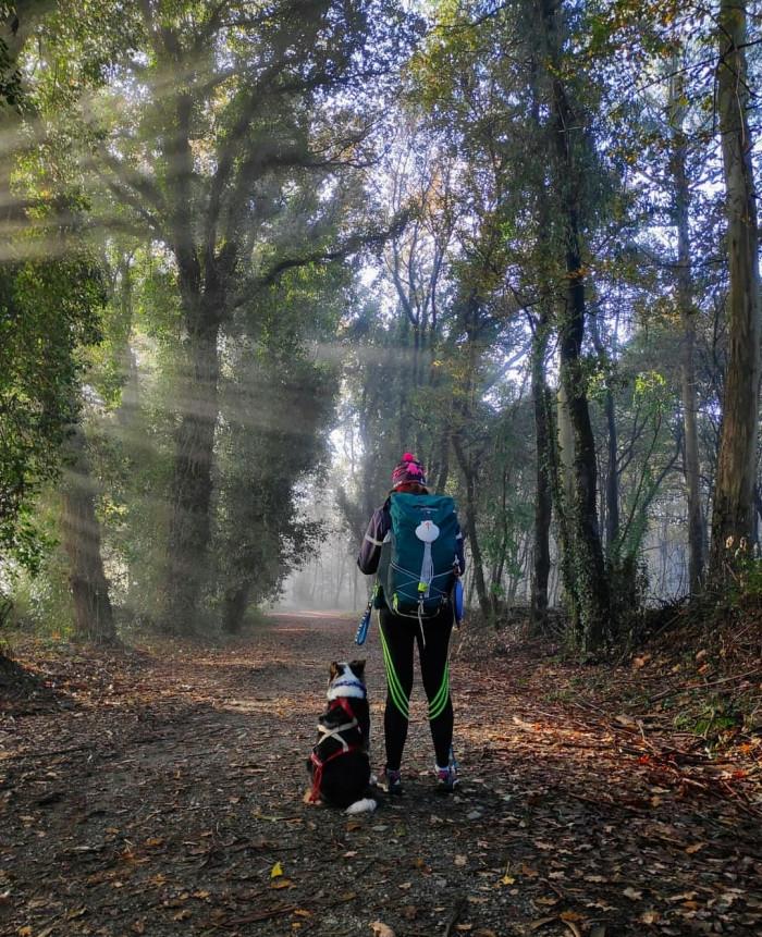 A la luz del Camino. Primer premio del concurso de fotografía Los símbolos del Camino
