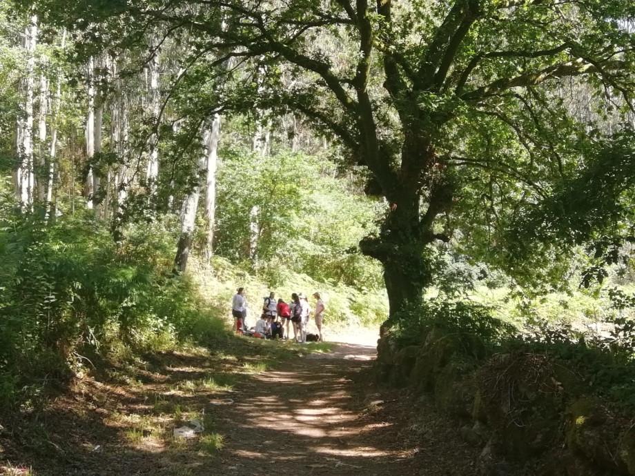 Descanso a la sombra en el Camino de Santiago