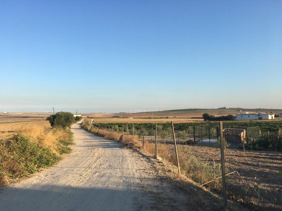 Tramo de la Vía Augusta, que discurre entre Cádiz y Sevilla