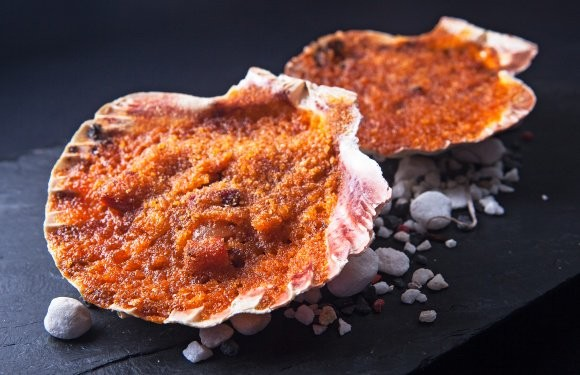 platos tipicos camino de santiago