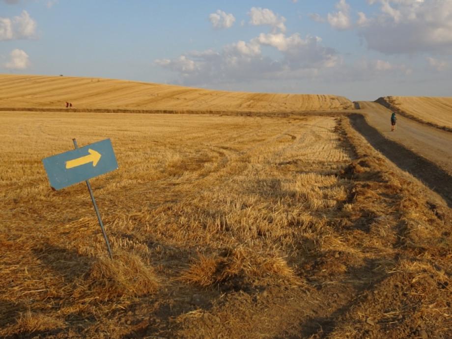 El Camino de Santiago: ¿solo o en compañía?