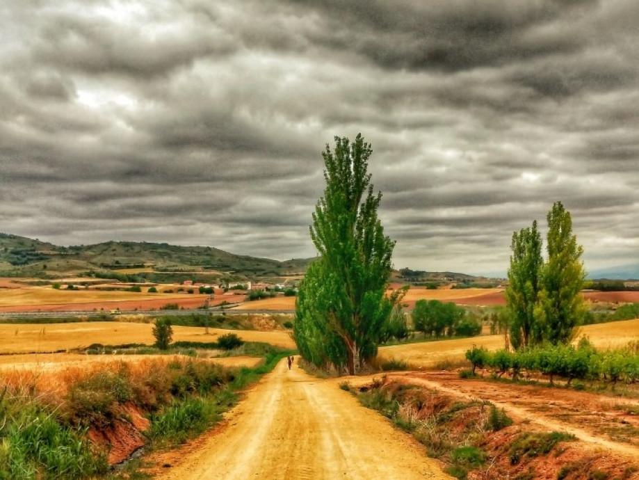 """FEAACS: """"Toca repensar el Camino de Santiago"""""""