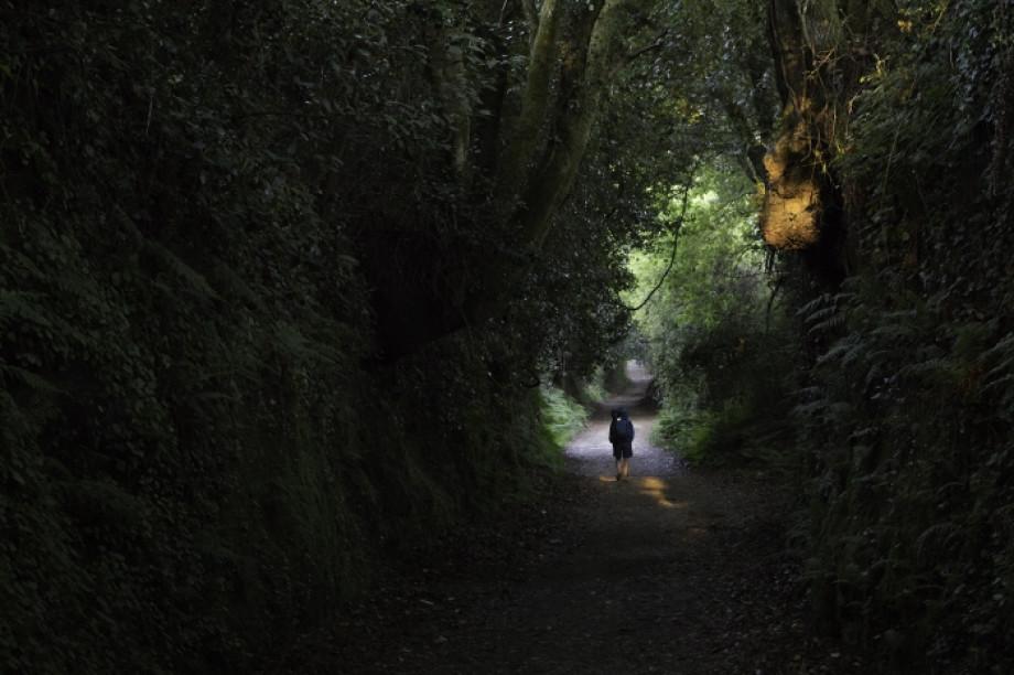 Diez consejos si vas a hacer sol@ el Camino de Santiago