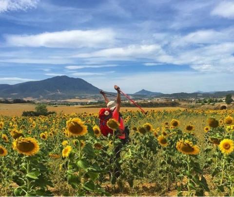 Consejos para un Camino de Santiago sostenible