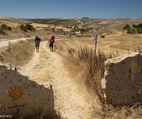 Como organizar o Caminho de Santiago depois da Covid-19