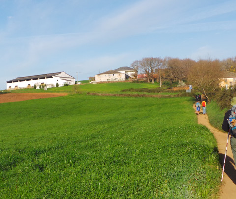 Guía del Camino Francés: de Sarria a Santiago