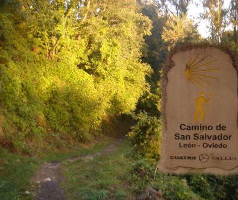 De León a Oviedo por el Camino de San Salvador