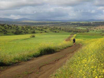Consejos para un Camino de Santiago seguro