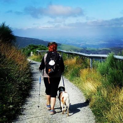 The Camino de Santiago with your dog