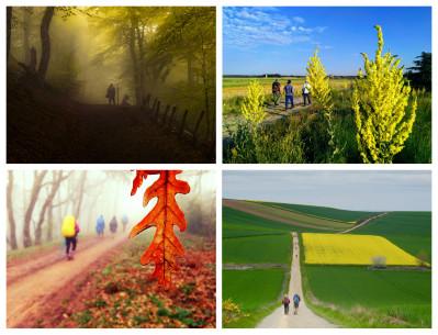 Ganadores del concurso 'Los Colores del Camino'
