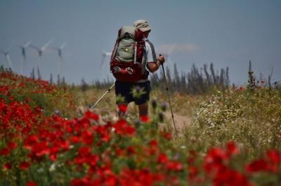 Primavera, la mejor época para hacer el Camino de Santiago