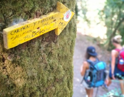 Which Camino de Santiago should you choose?