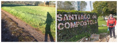 Walking the Camino de Santiago during Covid-19