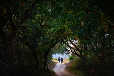 Reasons to do the Camino de Santiago in 2021 and 2022