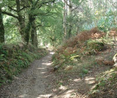 Ruta por Olveiroa en el Camino a Fisterra