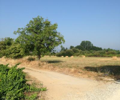 Camino desde Molinaseca a Villafranca