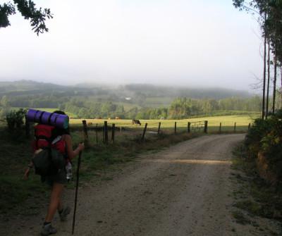 Camino de Santiago en dirección a Arzúa