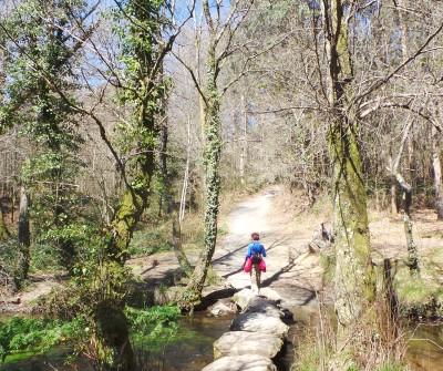 Etapa del Camino Francés entre Arzúa y O Pedrouzo
