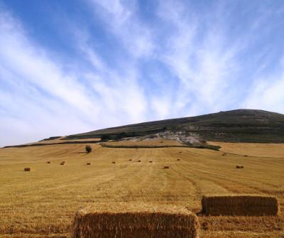 Camino de Santiago Francés entre Burgos y Hontanas
