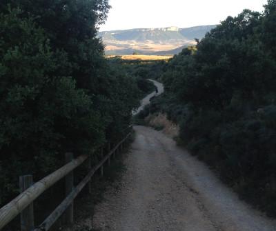 Tramo del Camino Francés entre Estella y Los Arcos