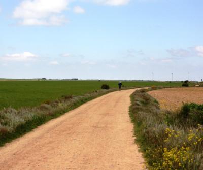 Camino Francés entre Hontanas y Boadilla del Camino