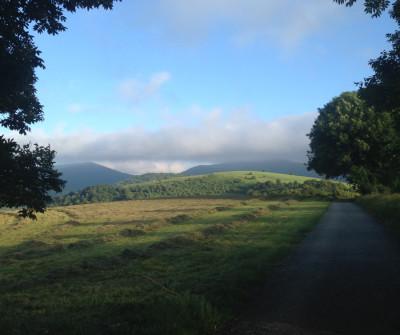 Camino Francés entre Roncesvalles y Zubiri