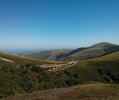 Paisaje montañoso en Roncesvalles