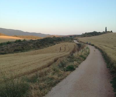 Camino Francés entre Puente la Reina y Estella