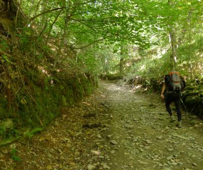 Salida de Triacastela, en el Camino de Santiago Francés