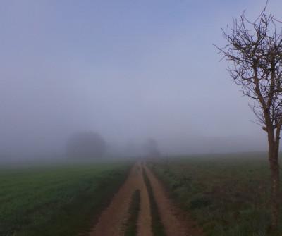 Niebla en el tramo del Camino Francés entre Triacastela y Sarria