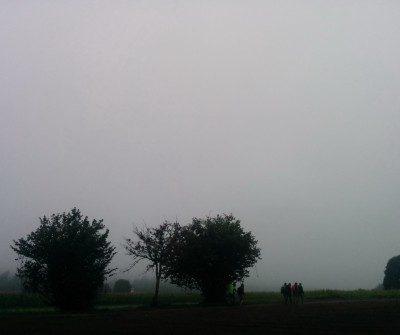 Niebla en O Pedrouzo, Camino de Santiago Francés