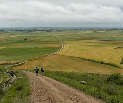 Camino de Santiago entre Boadilla del Camino y  Carrión de los Condes