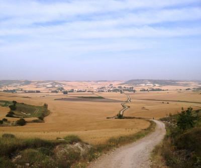 Camino Francés entre Burgos y Hontanas