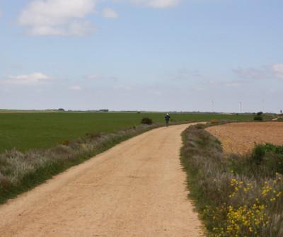 Etapa Burgos - Hontanas del Camino de Santiago Francés